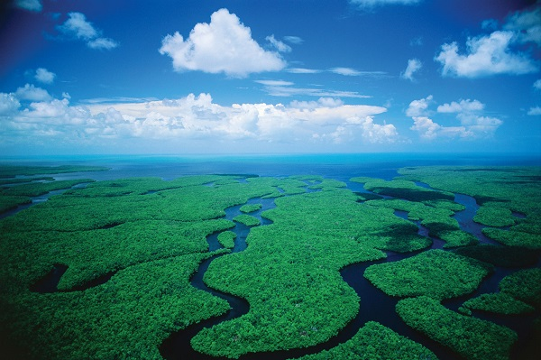 Welcome-to-Everglades-National-Park