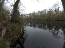 Ginnie Springs River
